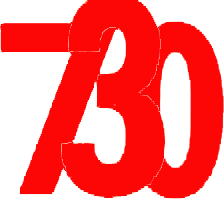 Consulenza 730