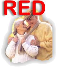 Consulenza Red del Centro Servizi Caminiti