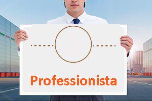 Sei un Professionista?