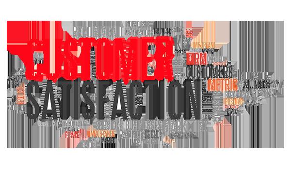 Customer Satisfaction Centro Servizi Caminiti